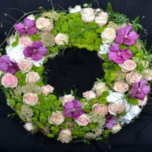 vanda santini rose sedum