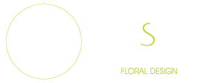 Logo Moments Subtils