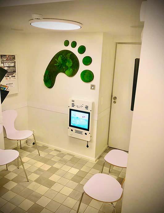 Décoration mur végétale, bureau